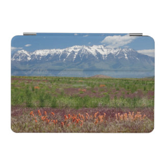 Utah, USA. Mt. Timpanogos Rises Above iPad Mini Cover