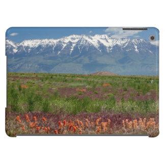 Utah, USA. Mt. Timpanogos Rises Above iPad Air Cases