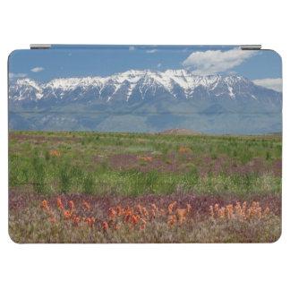 Utah, USA. Mt. Timpanogos Rises Above iPad Air Cover