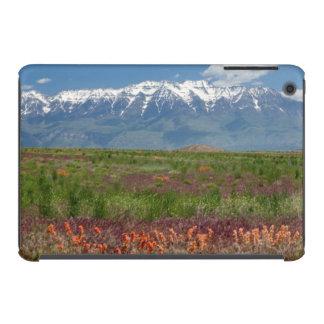 Utah, USA. Mt. Timpanogos Rises Above iPad Mini Cases