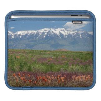 Utah, USA. Mt. Timpanogos Rises Above iPad Sleeve