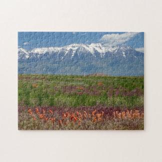 Utah, USA. Mt. Timpanogos Rises Above Jigsaw Puzzle