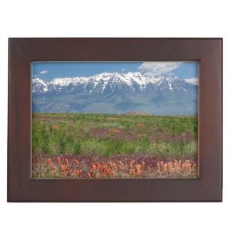 Utah, USA. Mt. Timpanogos Rises Above Keepsake Boxes