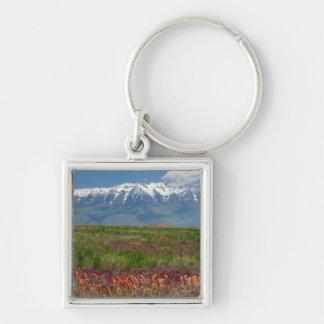 Utah, USA. Mt. Timpanogos Rises Above Key Ring