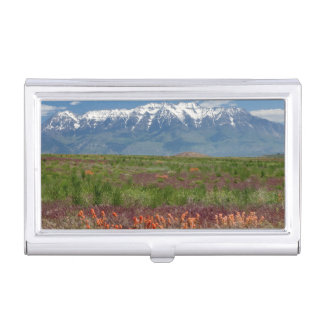 Utah, USA. Mt. Timpanogos Rises Above Business Card Holder