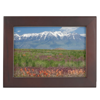 Utah, USA. Mt. Timpanogos Rises Above Keepsake Boxes