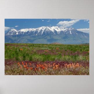 Utah, USA. Mt. Timpanogos Rises Above Poster