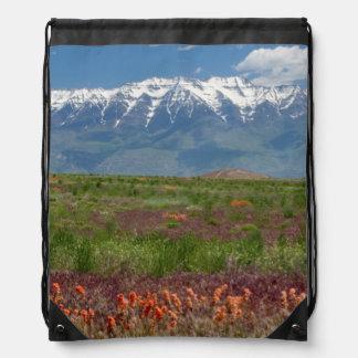 Utah, USA. Mt. Timpanogos Rises Above Rucksacks