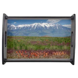 Utah, USA. Mt. Timpanogos Rises Above Service Trays