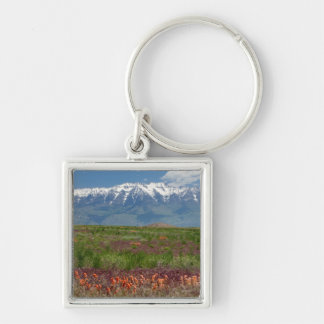 Utah, USA. Mt. Timpanogos Rises Above Silver-Colored Square Key Ring