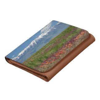 Utah, USA. Mt. Timpanogos Rises Above Wallets