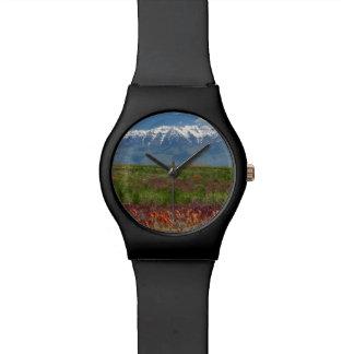 Utah, USA. Mt. Timpanogos Rises Above Watch