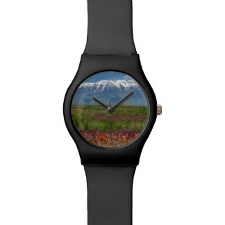 Utah, USA. Mt. Timpanogos Rises Above Wrist Watch