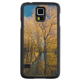 Utah. USA. Peachleaf Willow Trees Carved Maple Galaxy S5 Case