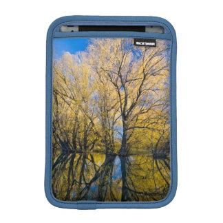Utah. USA. Peachleaf Willow Trees iPad Mini Sleeve
