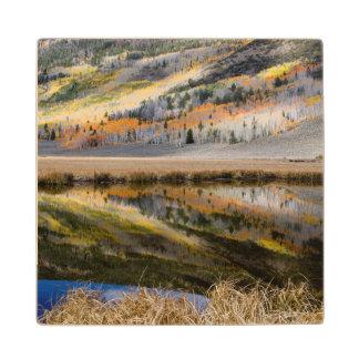 Utah, USA. Pond At Frying Pan Flat Wood Coaster