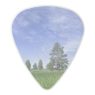 UTAH. USA. Ponderosa pines Pinus ponderosa) & Acetal Guitar Pick