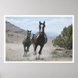 Utah Wild Horses Running Poster
