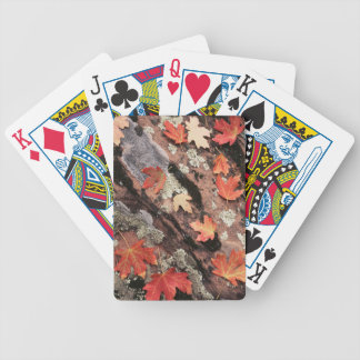 Utah, Zion National Park, Patterns of autumn Bicycle Playing Cards