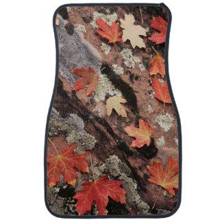 Utah, Zion National Park, Patterns of autumn Car Mat