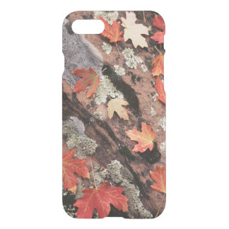Utah, Zion National Park, Patterns of autumn iPhone 8/7 Case