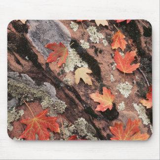 Utah, Zion National Park, Patterns of autumn Mouse Mat