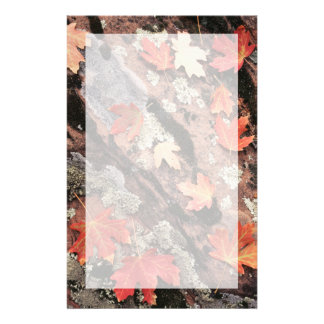 Utah, Zion National Park, Patterns of autumn Stationery