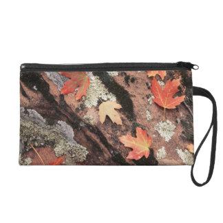 Utah, Zion National Park, Patterns of autumn Wristlet Purses