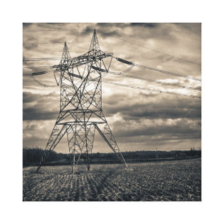 Utility Pole in Field Canvas Print
