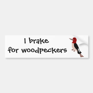 UU- Amazing Red Headed Woodpecker Art Bumper Sticker