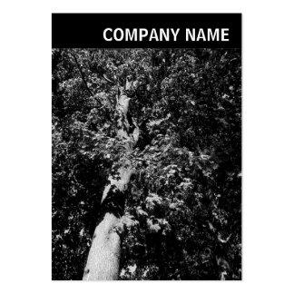 V Header - Image - Plane Tree Business Card