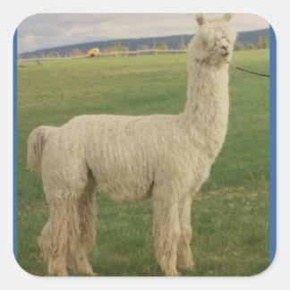 Va Va Va Voom Alpaca Sticker
