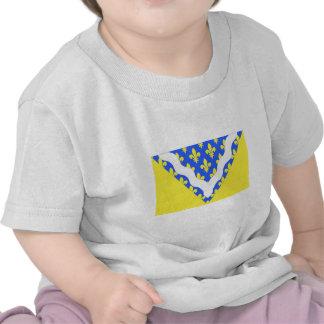 Val-de-Marne flag Tshirts