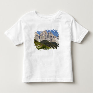 Val di Funes, Villnosstal, Dolomites, Italy Tshirts