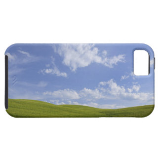 Val d'Orcia, Tuscany, Italy iPhone 5 Covers