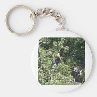 Valdez, Alaska Bald Eagle Basic Round Button Key Ring