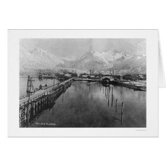 Valdez Alaska Birdseye 1905 Cards