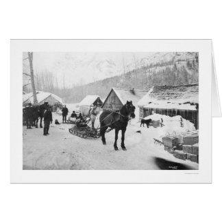 Valdez Trail Horses Alaska 1912 Greeting Card