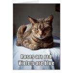 Valentine Cat funny poem Card