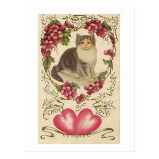 Valentine Cat Postcard