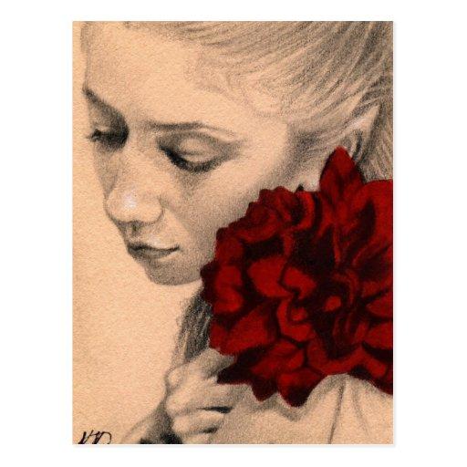 Valentine fairy rose Postcard
