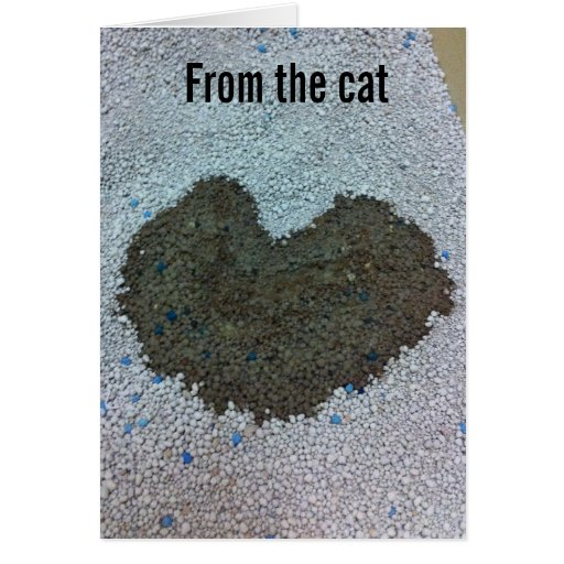 Valentine from the Cat Greeting Card