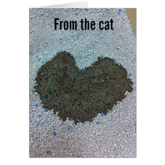 Valentine from the Cat Note Card