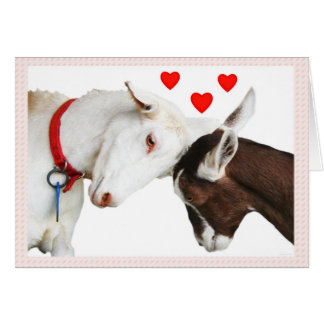 Valentine Goat Couple Card