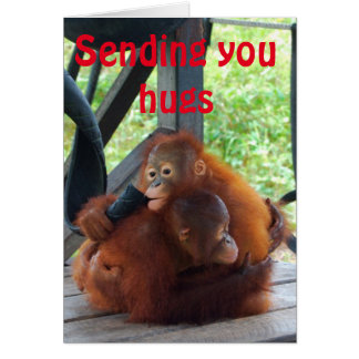 Valentine Hug Orangutan Animal Love Greeting Card