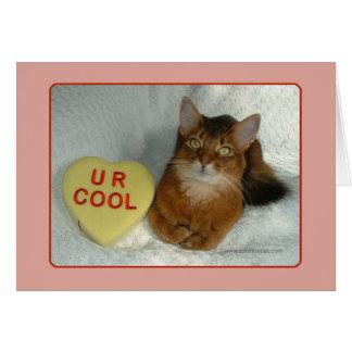 Valentine Kitty U R Cool Card