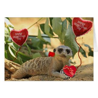 Valentine Meerkat Cards