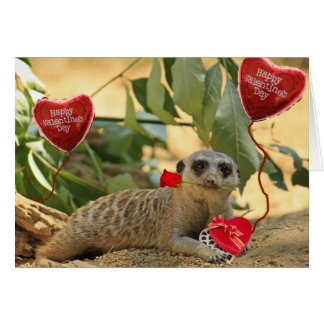 Valentine Meerkat Greeting Card