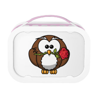 Valentine Owl Lunchboxes