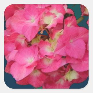 Valentine Pink Hydrangeas & Teal gifts by Sharles Sticker